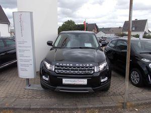 LAND ROVER Range Rover Evoque TD4 Pure Allrad, Navi, Leder u.v.m